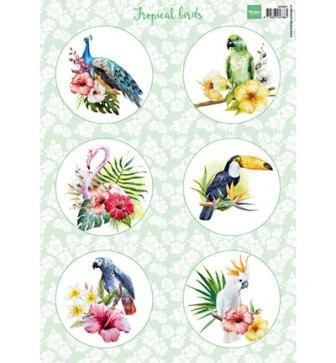 Marianne Design Tropical birds