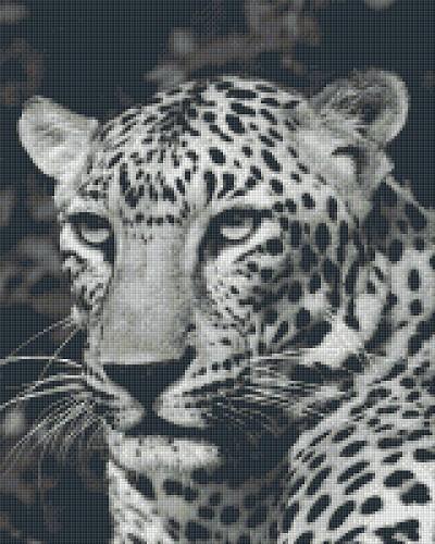 3a6c53462d9 Pixelhobby 16 platen panter zwart/wit. Het Kralendorp goedkope ...