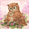 ***DD7.004 Diamond Dotz - 42X42cm - Mother & Baby Owl.