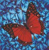 ***DD5.020 Diamond Dotz - 30.5 x 30.5cm - Flutterby Red.