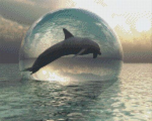 Pixelhobby Patroon Dolfijn Ii 9 Basisplaten Het Kralendorp Goedkope
